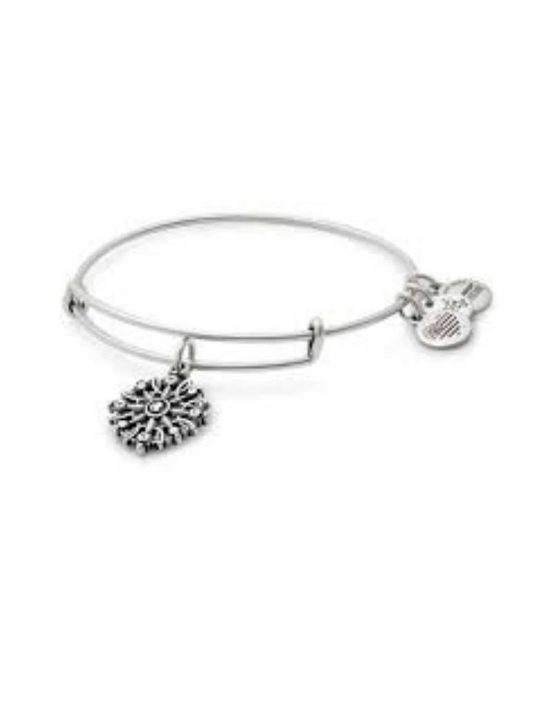 ALEX AND ANI A17EBCOMPRS COMPASS III SIL