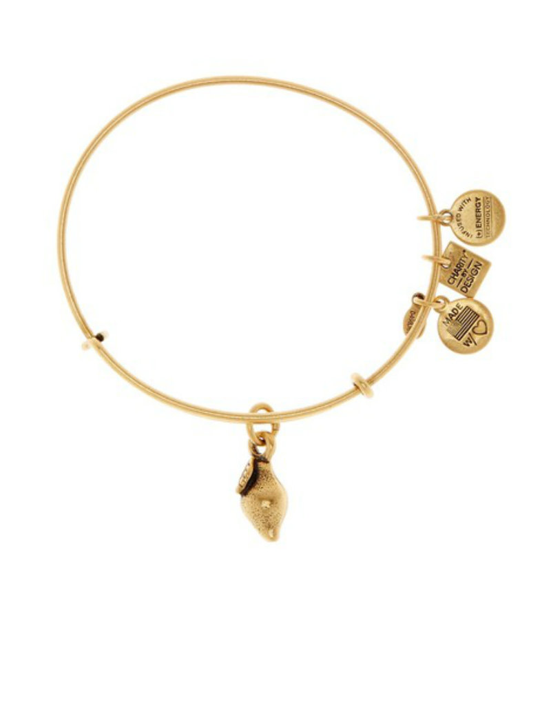 ALEX AND ANI CBD14ZFLRG ZEST FOR LIFE CHAR RGLD