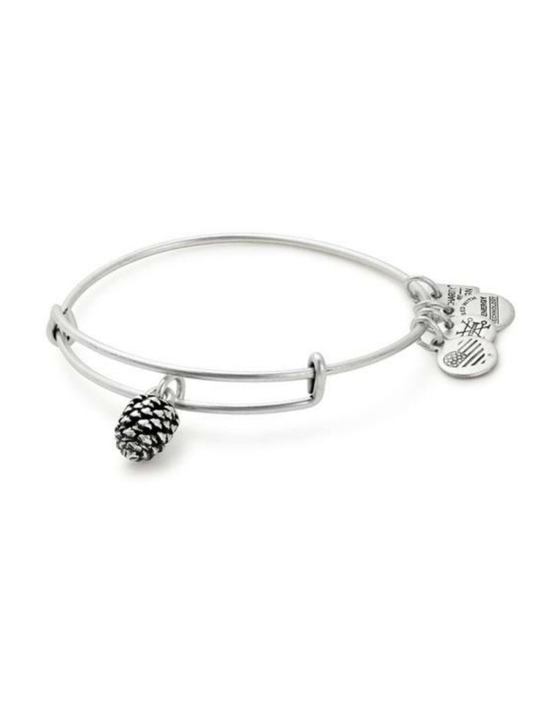 ALEX AND ANI CBD17PCRS Pinecone Charm Bangle
