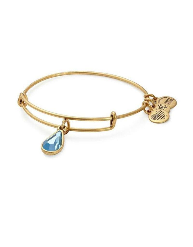 ALEX AND ANI A17EB42RG March Drop Charm Bangle Bracelet
