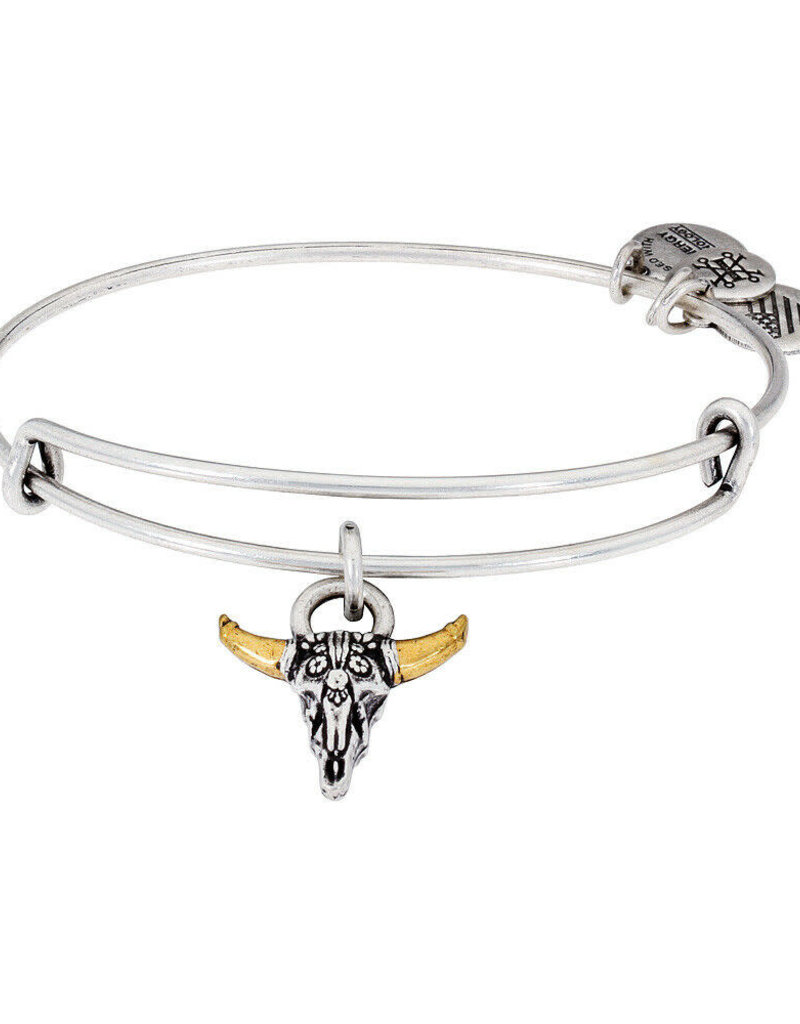 ALEX AND ANI A17EBSPSRS SPIRITED SKULL SILVER