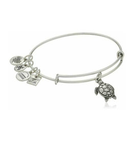 ALEX AND ANI CBD16STRS CHARITY BY DESIGN, TURTLE EWB, RS