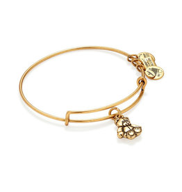 ALEX AND ANI CBD14LBBRG LITTLE BROWN BEAR GOLD