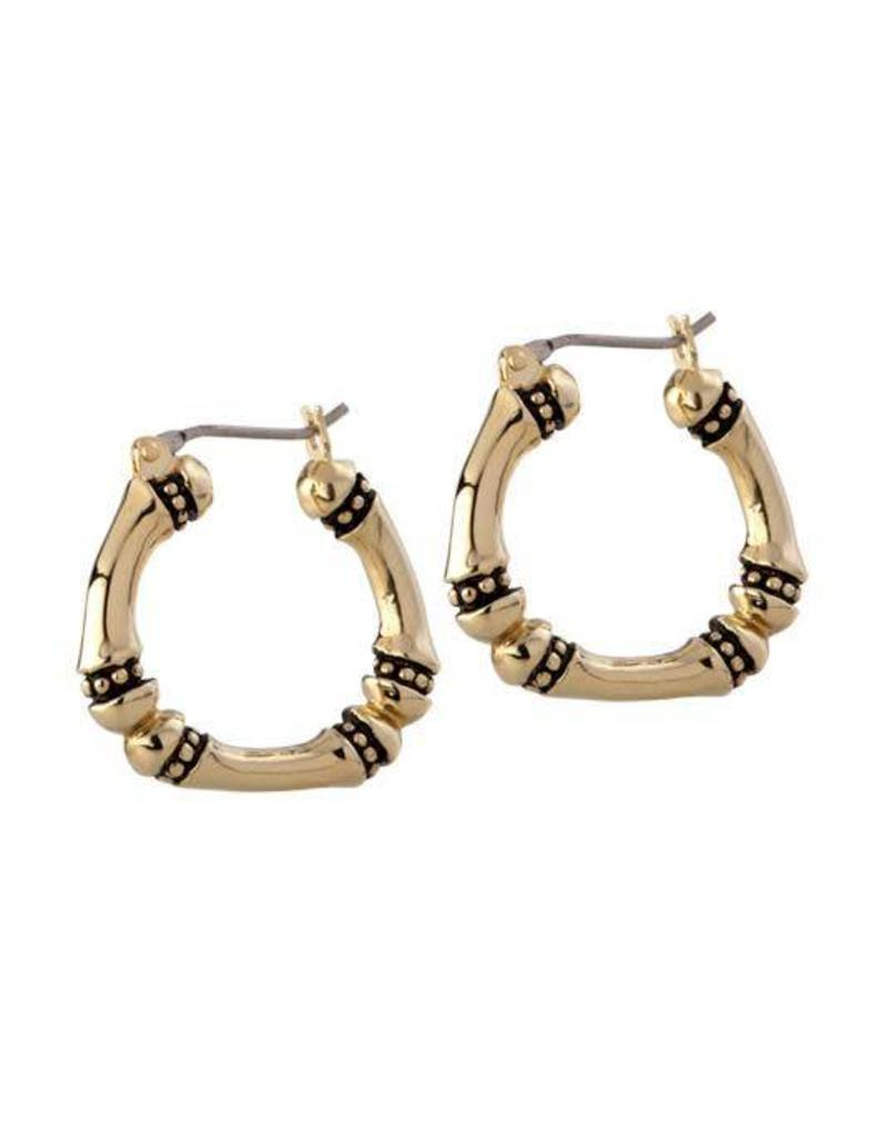 JOHN MEDEIROS G4094-G000 CANIAS GOLD MEDIUM HOOP EARRINGS GOLD