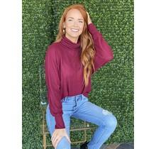 Burgundy Hacci Turtleneck Sweater Top