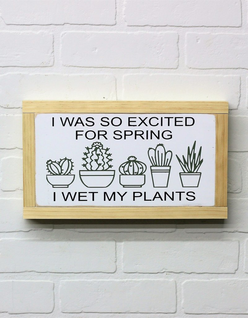 I was so excited for Spring, I wet my plants wood sign