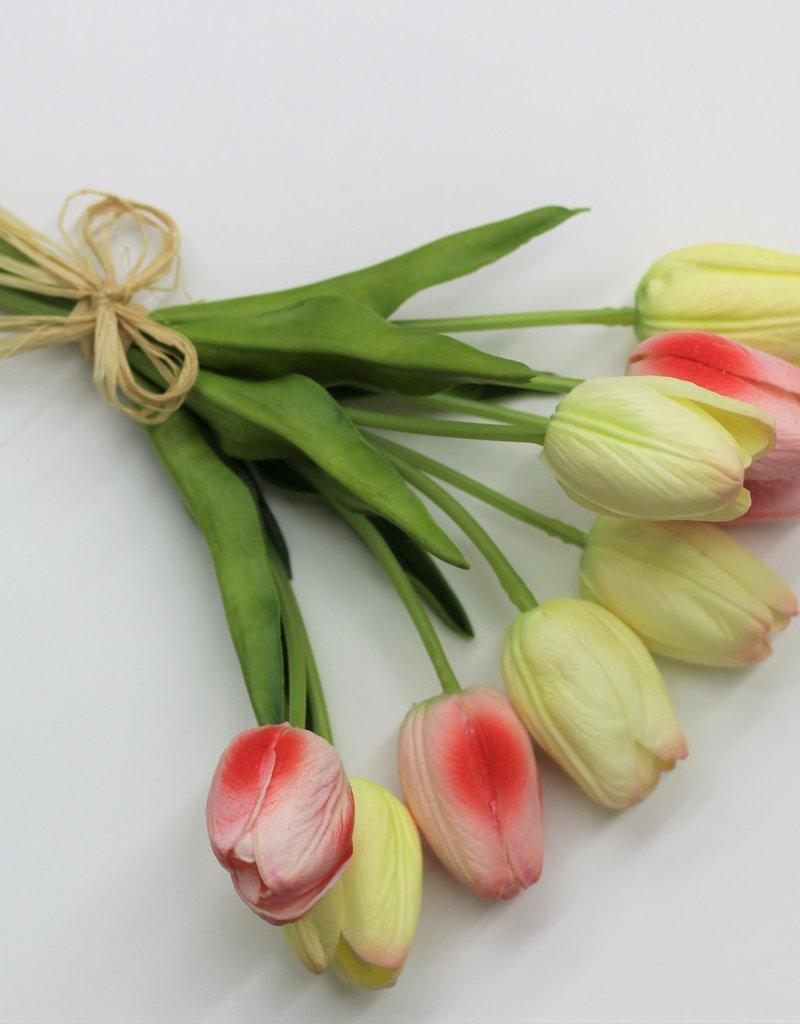 Tulip Bundles