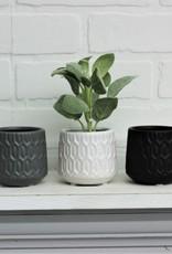 Set of 3 Mini Pots