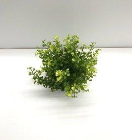 """6.5"""" Baby Grass 1/2 Orb"""