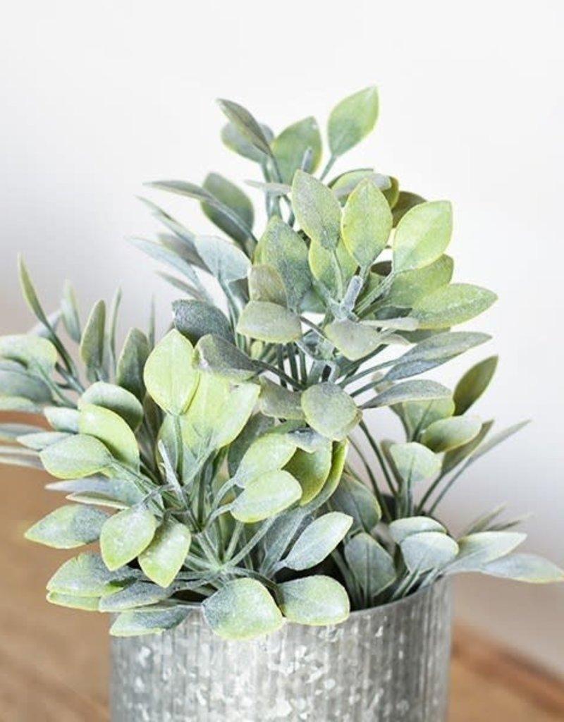 "20.5"" Green Bush"
