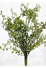 "Button Leaf Bush 18"""