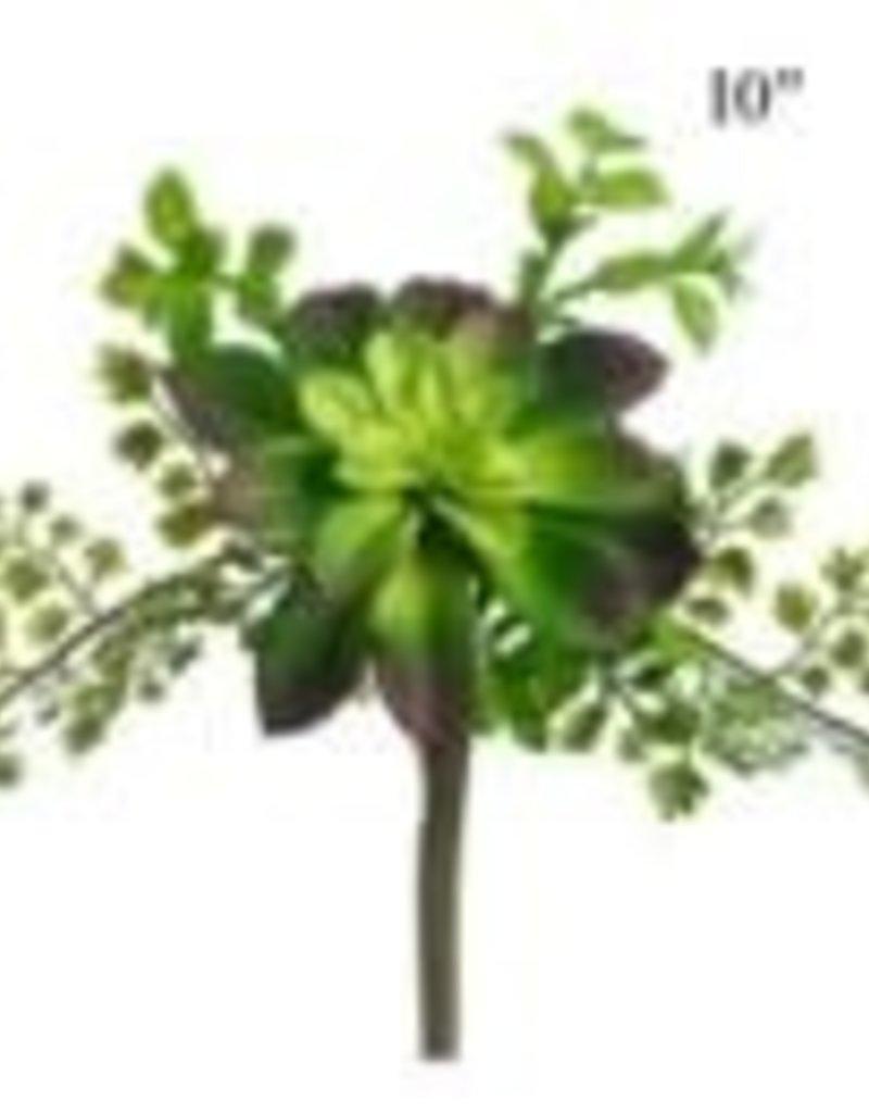 """Succulent Fern Pick 10"""""""