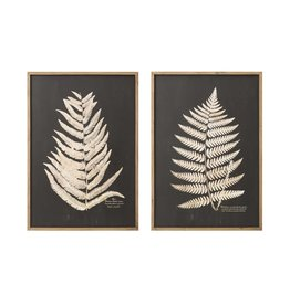 Fern Framed Wall Decor