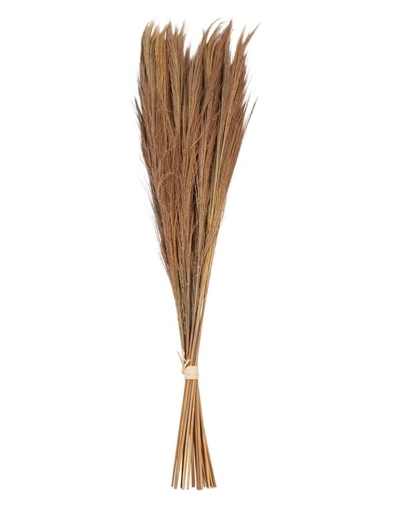 Dried Natural Tiger Grass