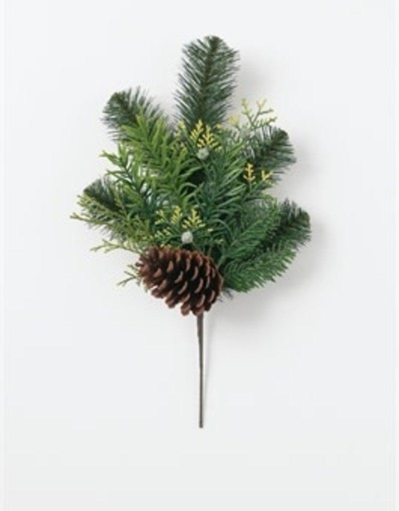 Australian Pine Pick