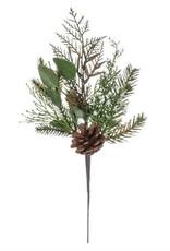 Cedar/Juniper/Eucalyptus Pick