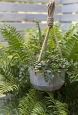 ELY Hanging Pot