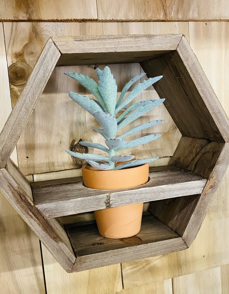 Hexagon Shaped Wood Wall Planter