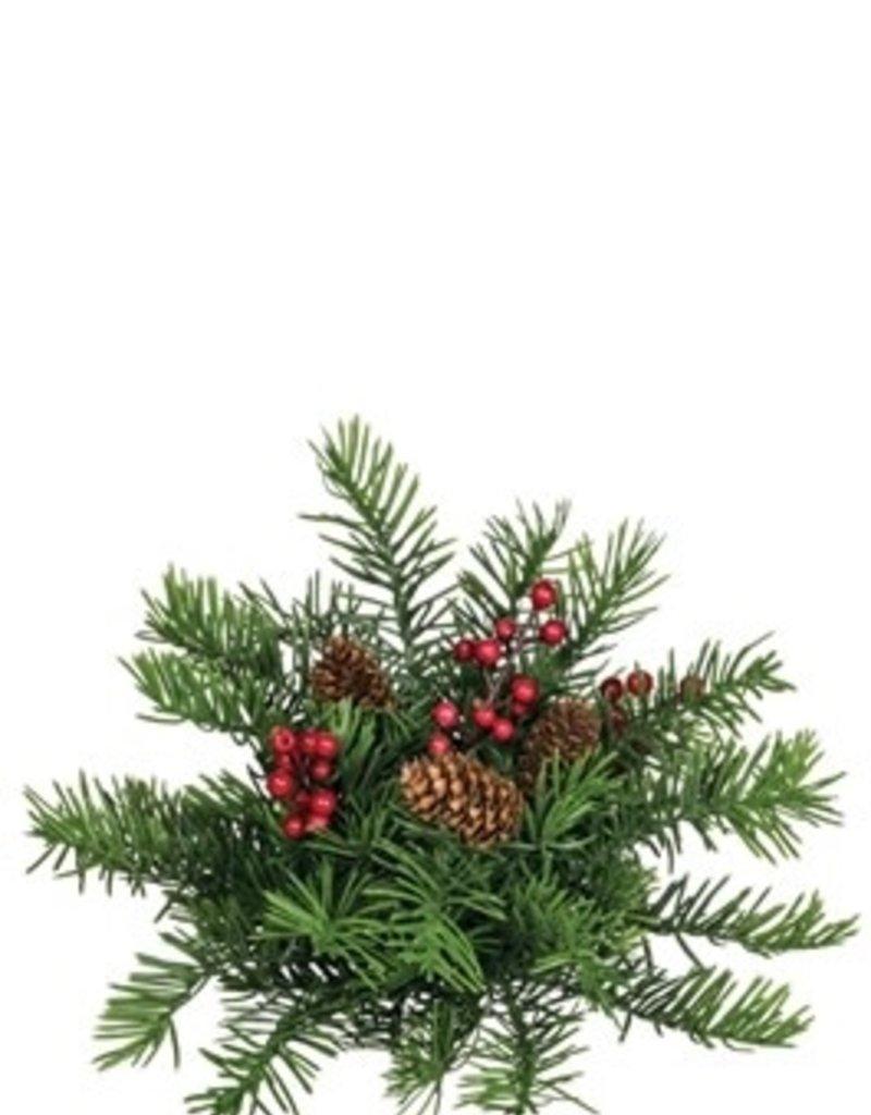 Douglas Pine Orb