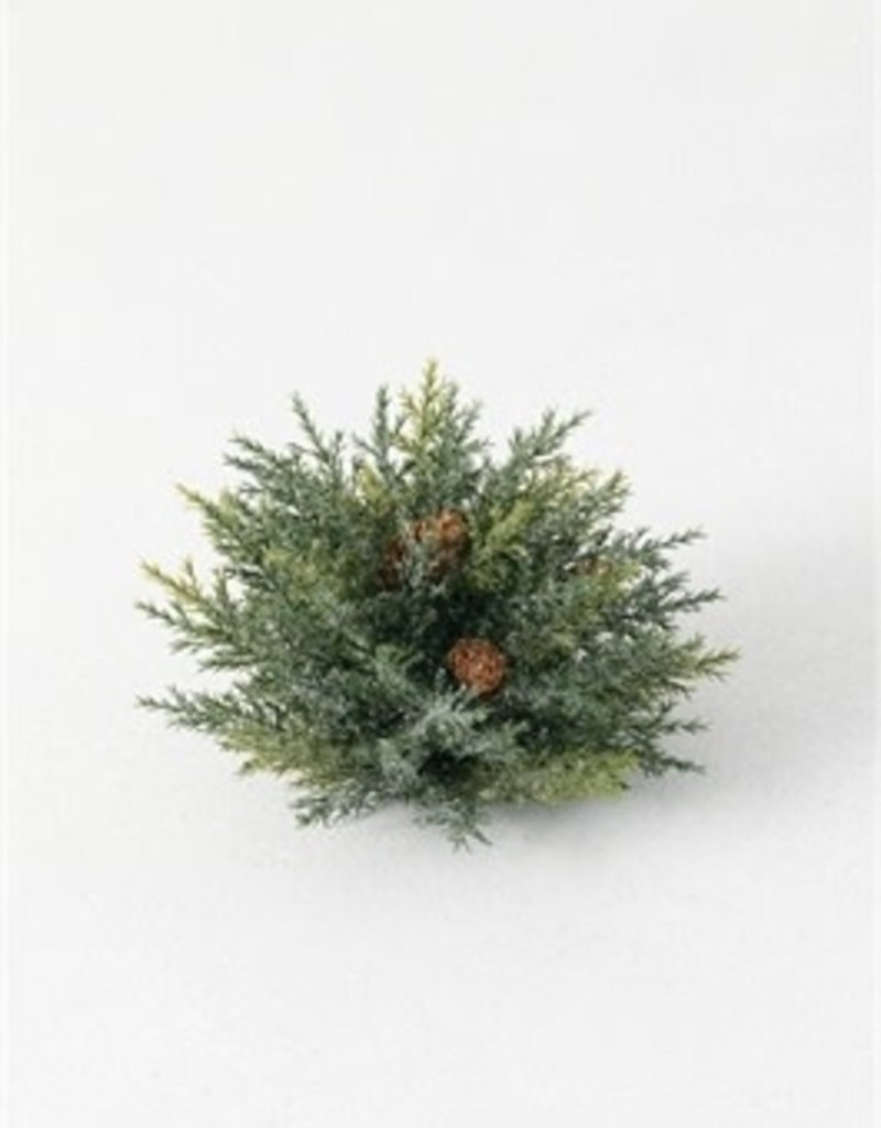 Frosted Arborvitae Orb