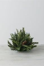 Hemlock/Cedar 1/2orb