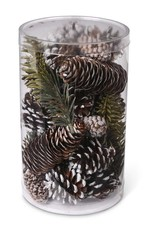Assorted Snowy Pinecones and Green Pine