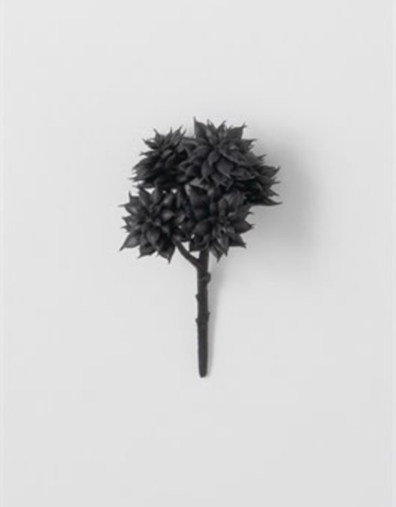 Kelsy Succulent Pick