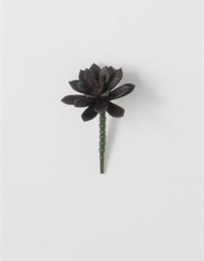 Katie Succulent Pick