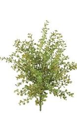 Pepper Grass Pick