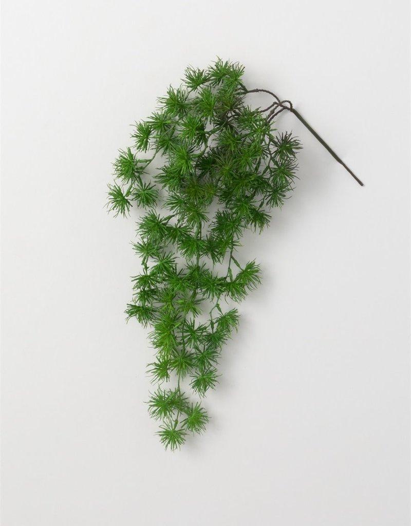 Ming Pine Spray