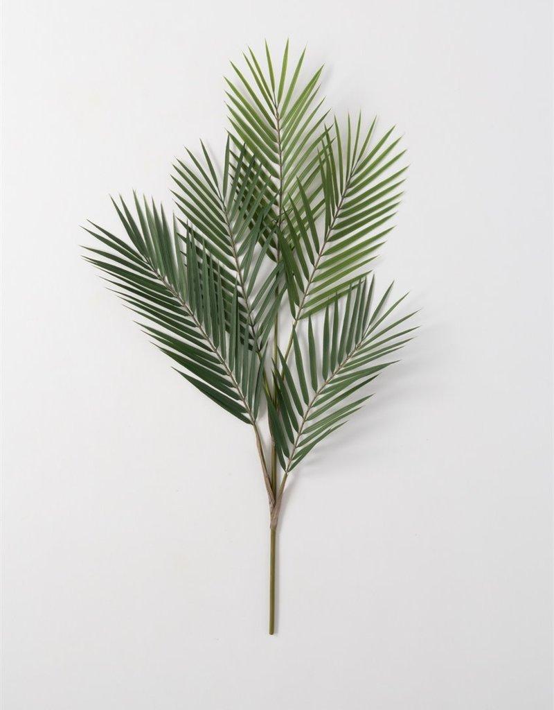 Palm Spray