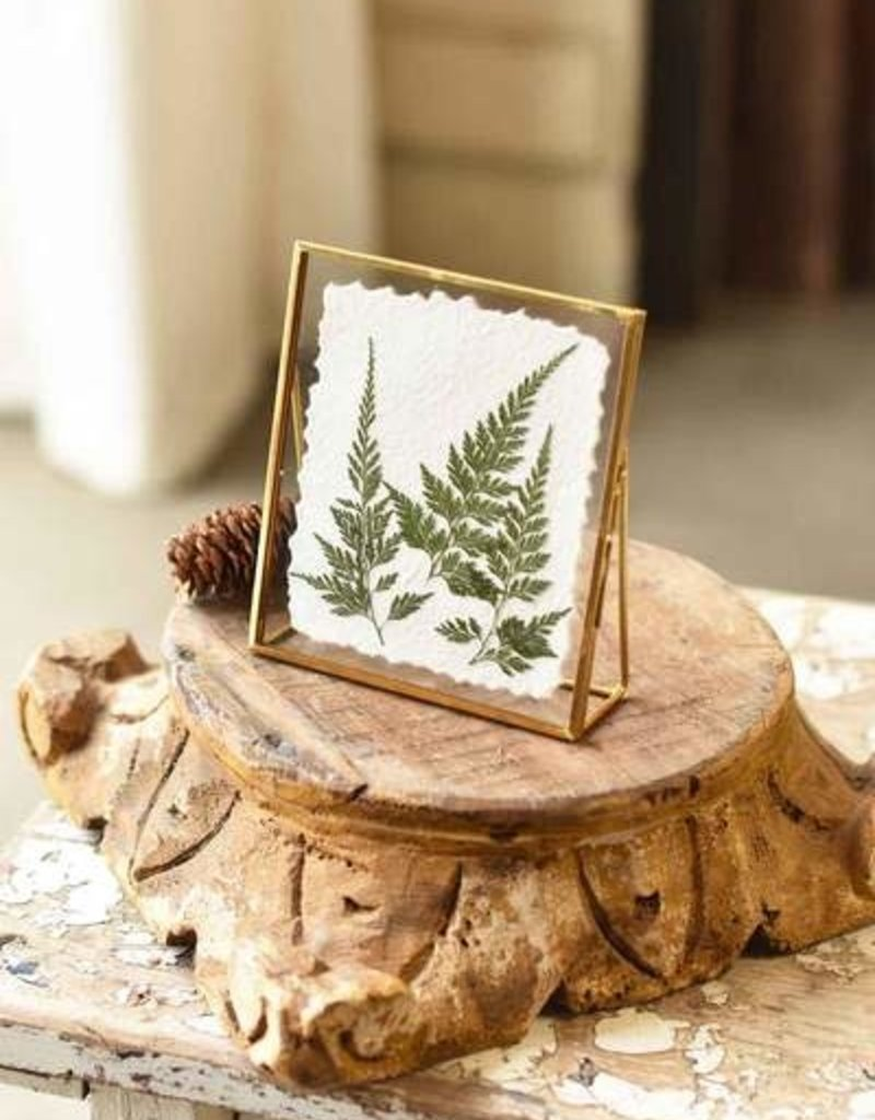 Fern Floating Frame Gold