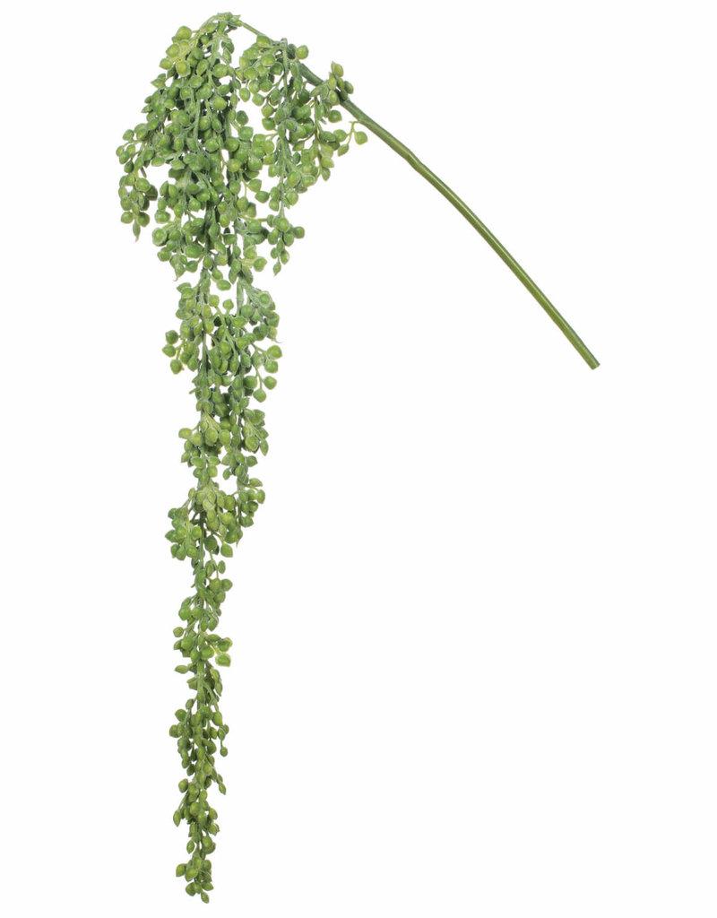 """Hanging Succulent 18"""""""