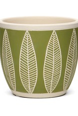 Grn/Wht Willowleaf Pot
