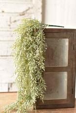 """34""""Mixed Sage Hanging Bush"""