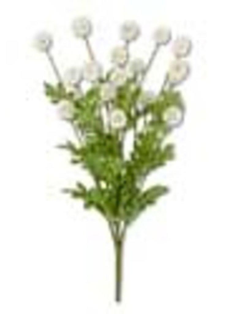 Mini Allium Bush w/Foliage