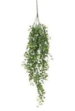"34"" Seraph Vine Hanging Bush"