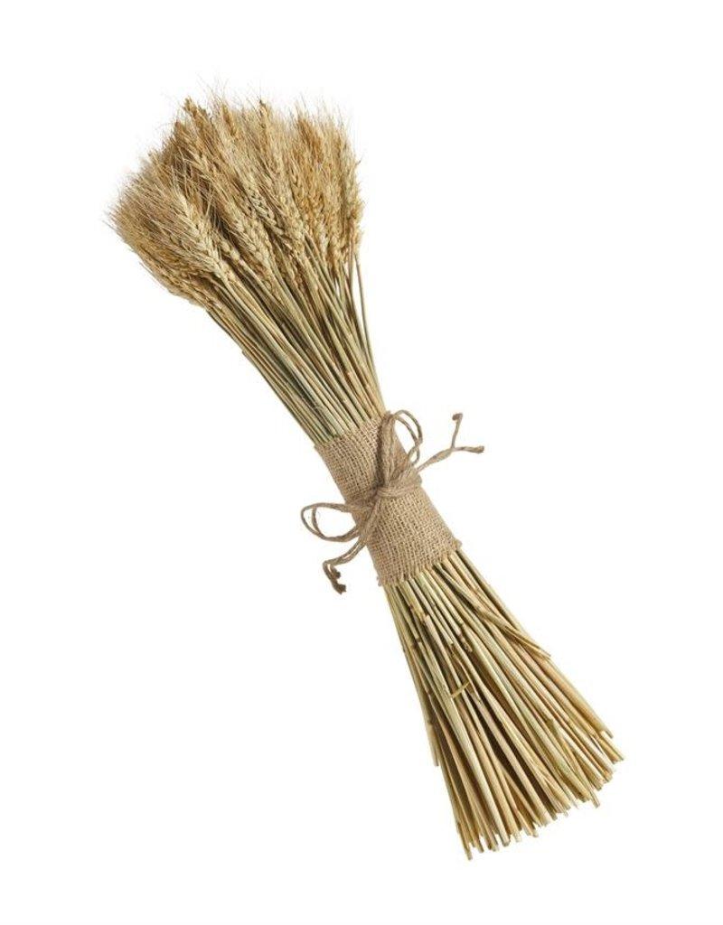 Dried Wheat Bundle