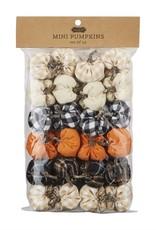 Mini Pumpkin Set