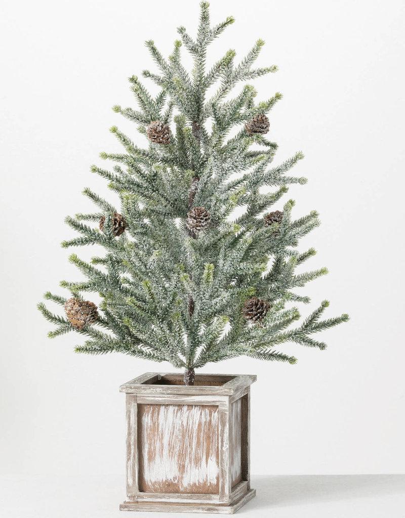"Potten Pine Tree, 24""H"