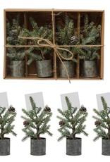 Plastic Pine Pot w/Clip