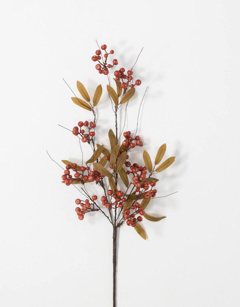 Berry Leaf Stem