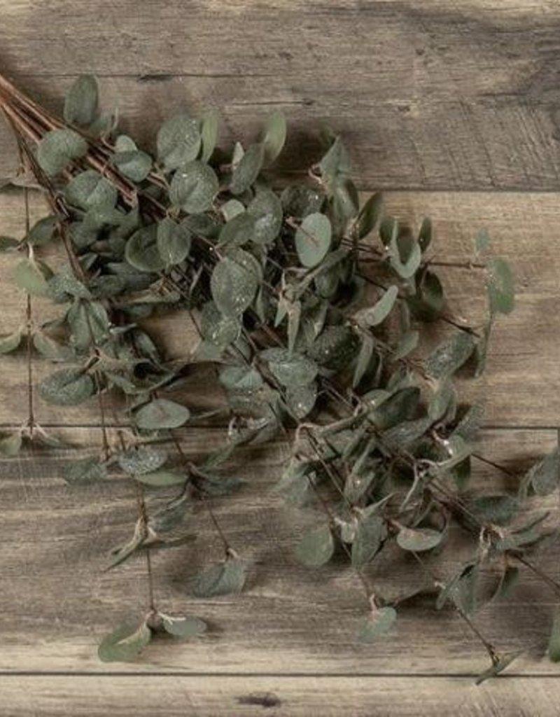 "35"" Eucalyptus Bundle w/Glitter"