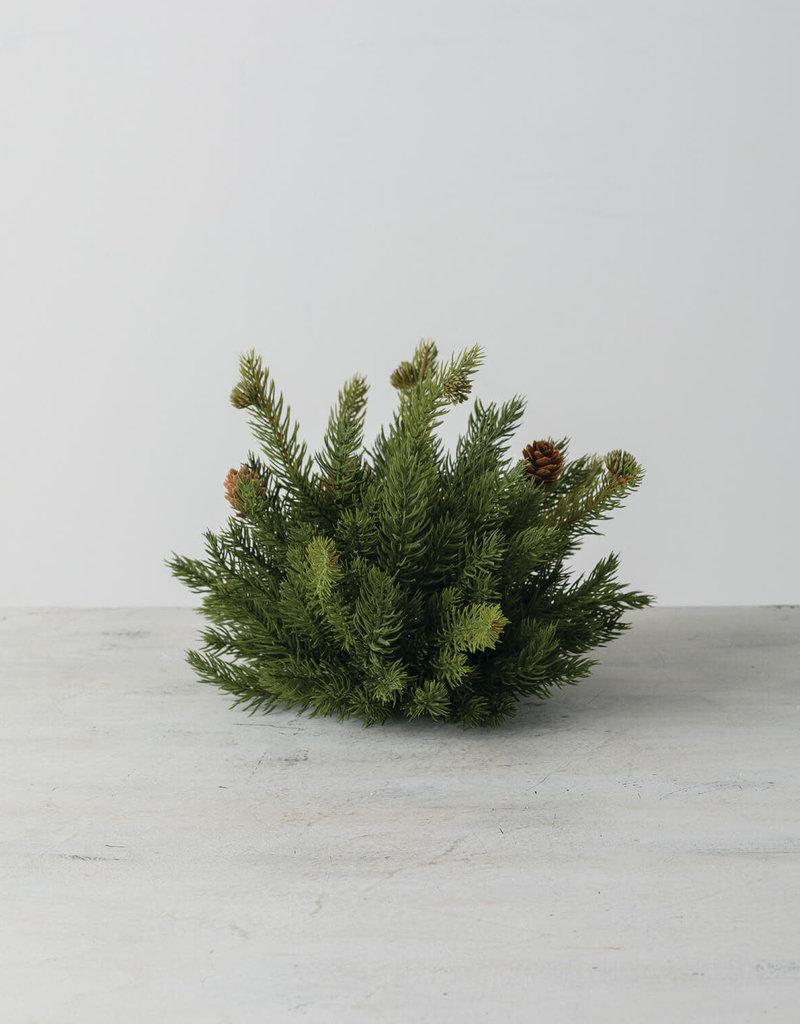 "White Spruce 1/2 Orb, 10""W"