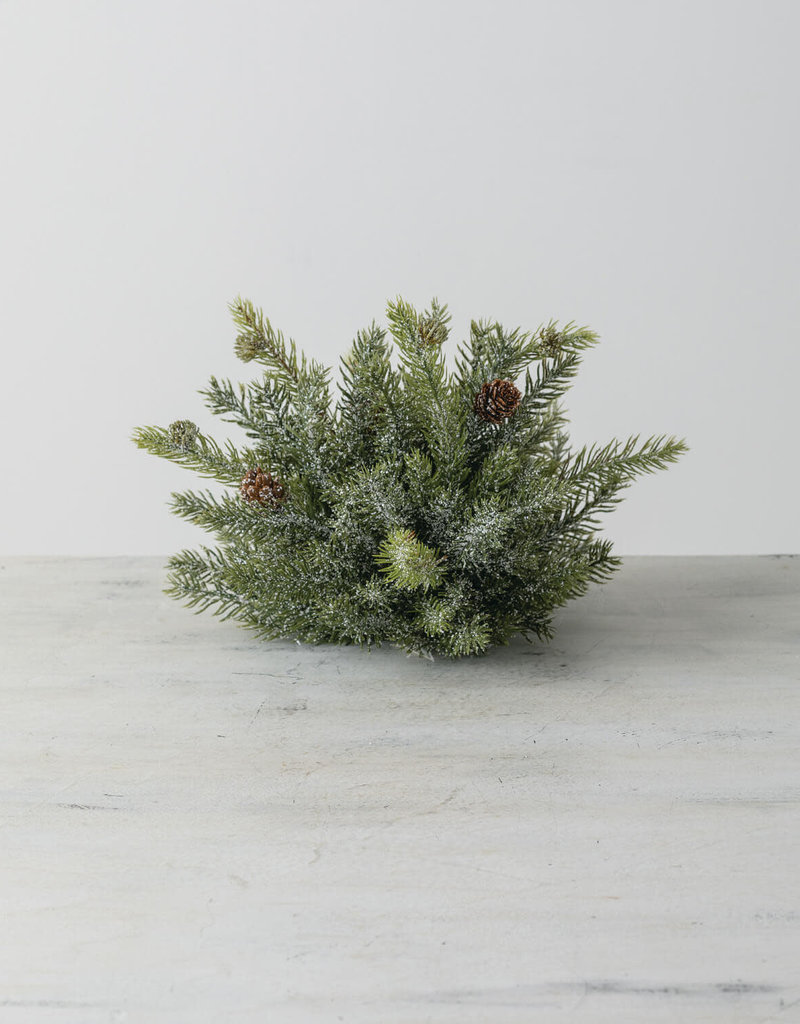 "White Spruce 1/2 Orb, 12""W"