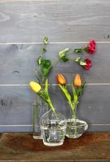 Clear Lab Bud Vase