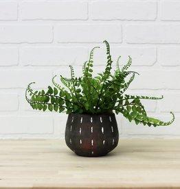 Gray Terra Cotta Pot