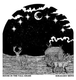 Guruguru Brain Kikagaku Moyo: House in the Tall Grass LP