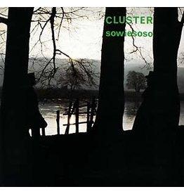 Bureau B Cluster: Sowiesoso LP