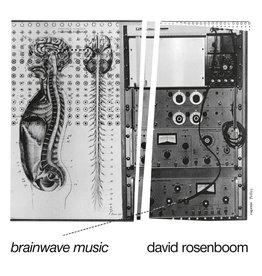 Black Truffle Rosenboom, David: Brainwave Music LP